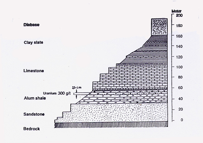 4. A diagram of the layers of sedementary rock at Ranstad.